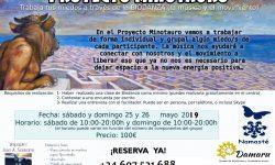 Proyecto_MinoTauro-25-26-mayo-19
