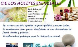 CHARLA sobre BENEFICIOS Y USOS DE LOS ACEITES